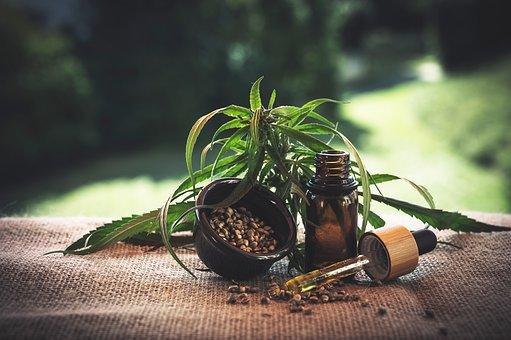 leczniczy olej cbd medihemp